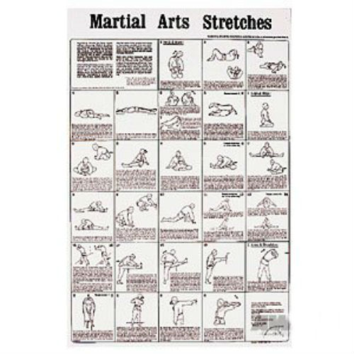 Male Static Stretching Chart: Martial Art Stretching Poster